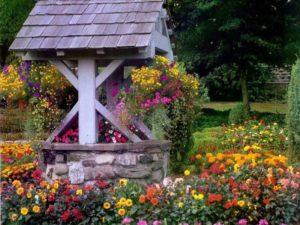 Красивое оформление колодца цветами