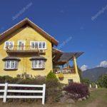 Эффектный дизайн желтого дома