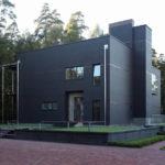 Кирпичный дом черного цвета с оригинальным дизайном