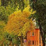 Оригинальный дизайн дома в оранжевых тонах