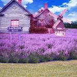Правильно оформляем дизайн фиолетового дома