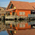 Пример оформления современного дизайна оранжевого дома