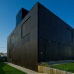 Вариант необычного дизайна черного дома