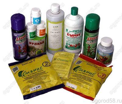 Биогумус - безопасный и эффективный способ повышения урожайности или здоровья растений