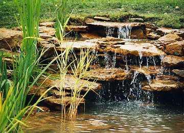 Как соорудить водоём на участке, устройство декоративного водоёма