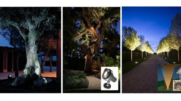 Подсветка деревьев и кустарников