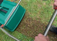 Посев и грамотная стрижка газона