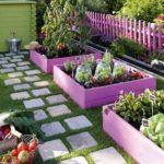 Составляем схему посадки растений на участке