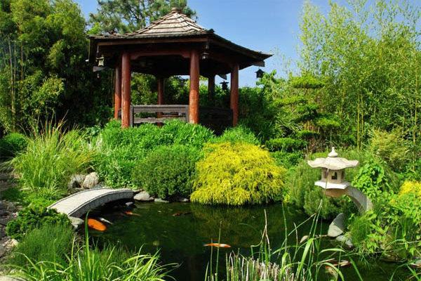 Свой Японский садик