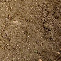 Анализ грунта под строительство