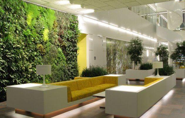 Фитодизайн интерьера – искусство озеленения