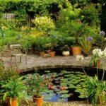 Планирование и создание искусственного водоема на участке