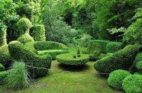 Ландшафтный дизайн. Топиары