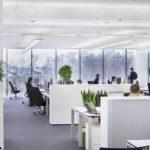 Фитодизайн и озеленение офисов