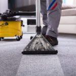 Чем чистить ковер в домашних условиях от запаха и грязи